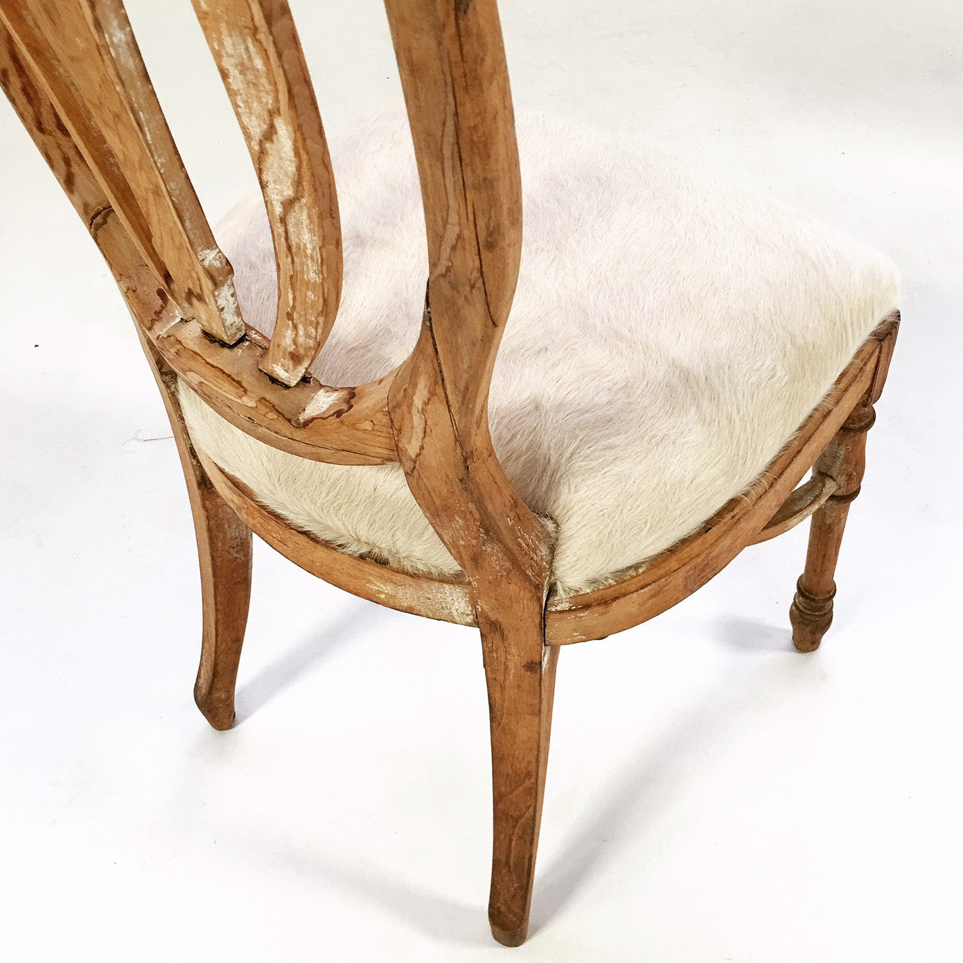 Maple Dining Chairs in Brazilian Cowhide, set of 6 - FORSYTH