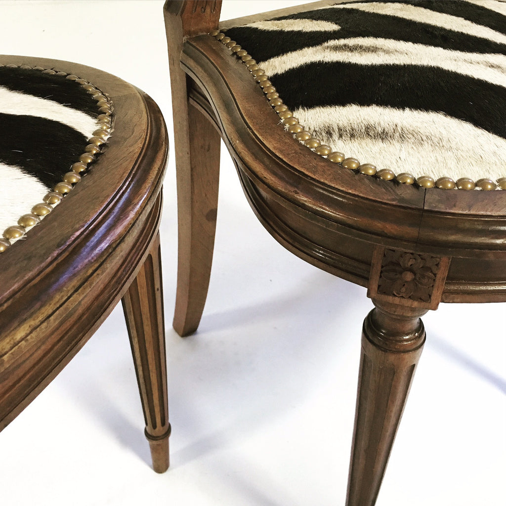 Louis XVI Style Side Chairs in Zebra Hide - FORSYTH