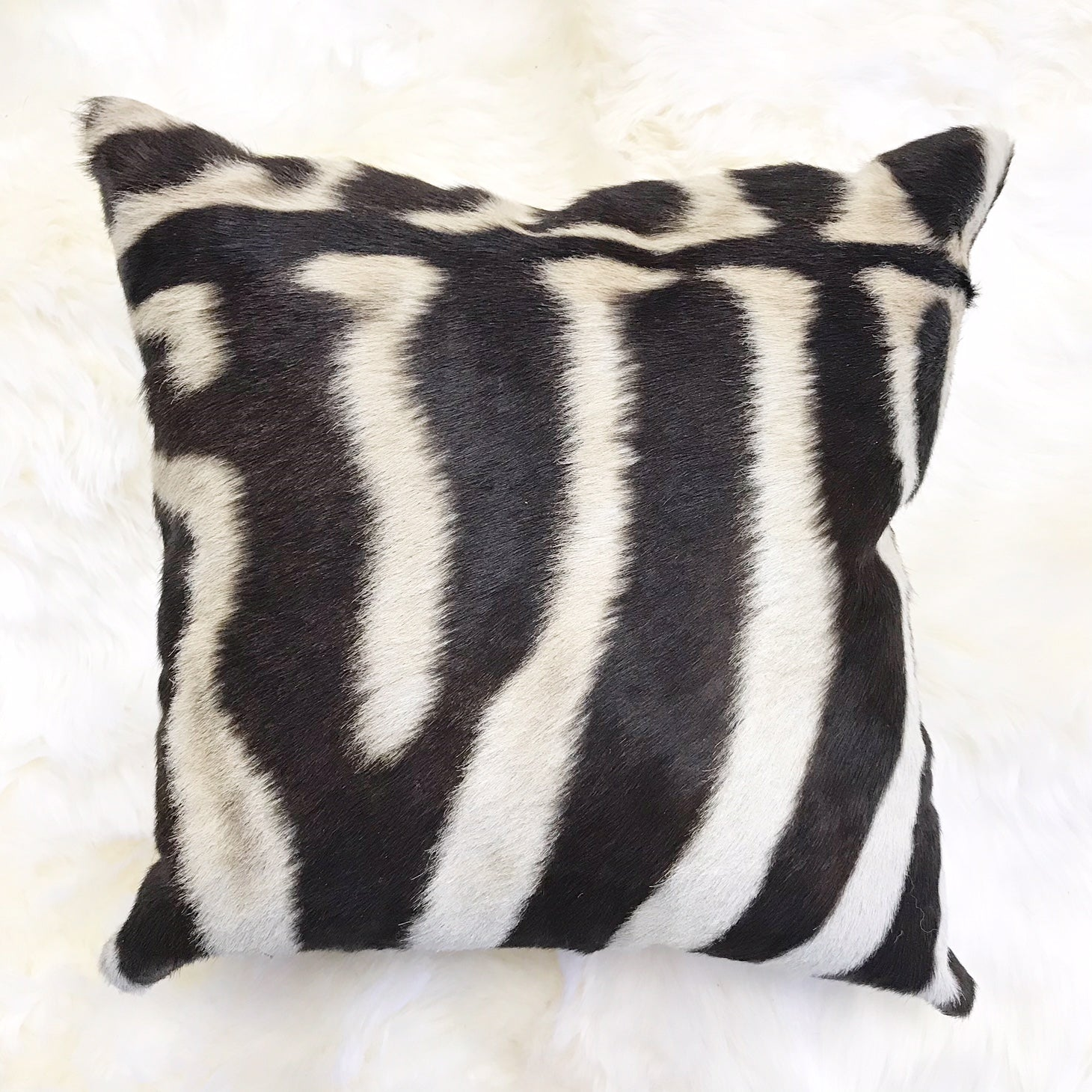 Zebra Hide Pillow, No. 215 - FORSYTH