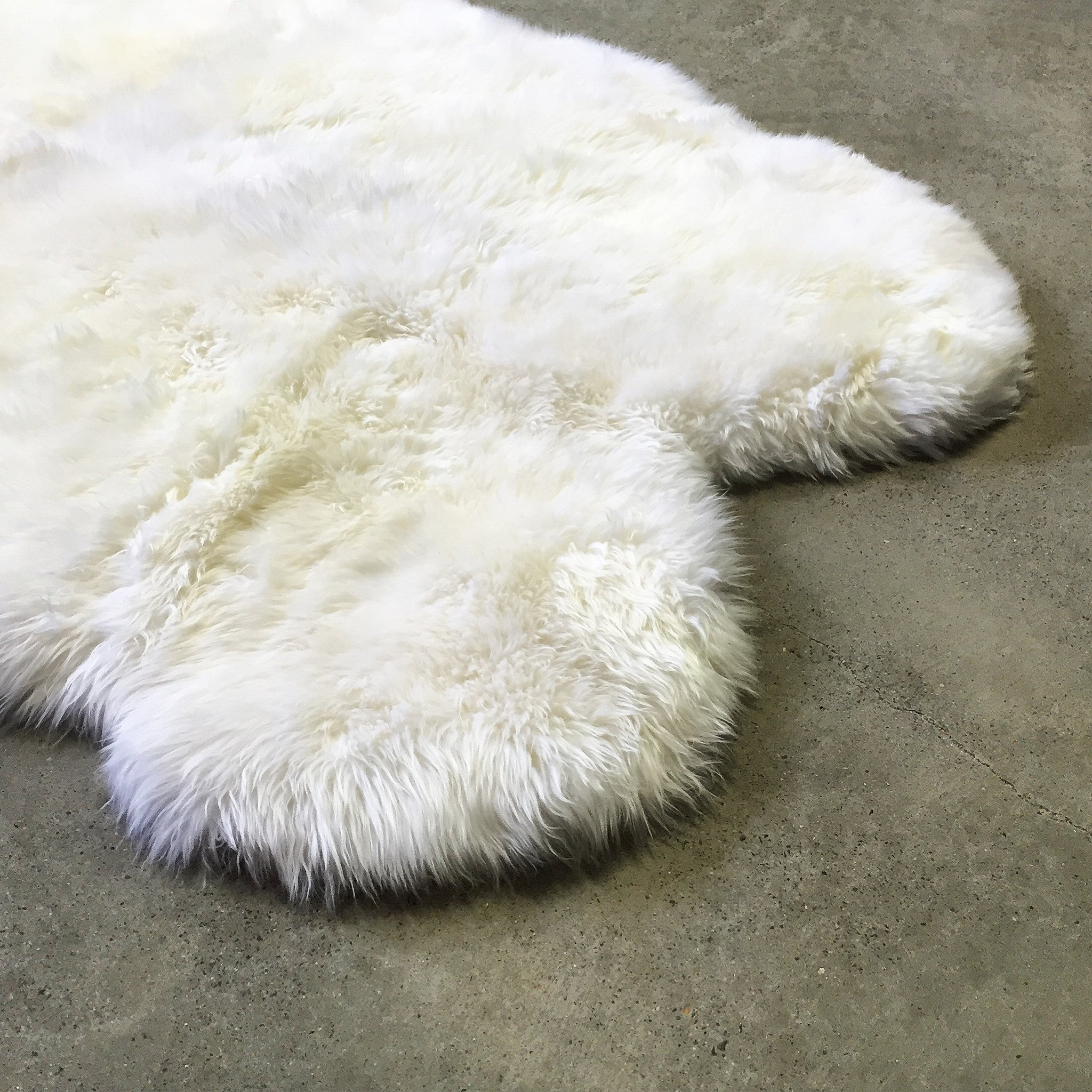 New Zealand Sheepskin Quad Rug, Ivory - FORSYTH