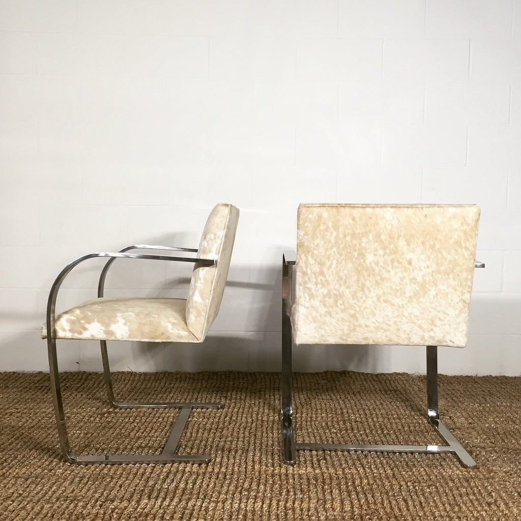 Mies Van Der Rohe Brno Chairs for Knoll in Brazilian Cowhide - FORSYTH