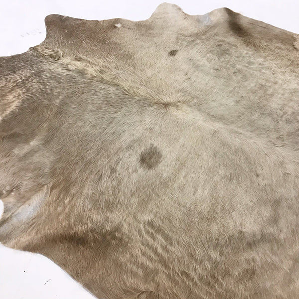 Brazilian Cowhide Rug, Champagne - FORSYTH