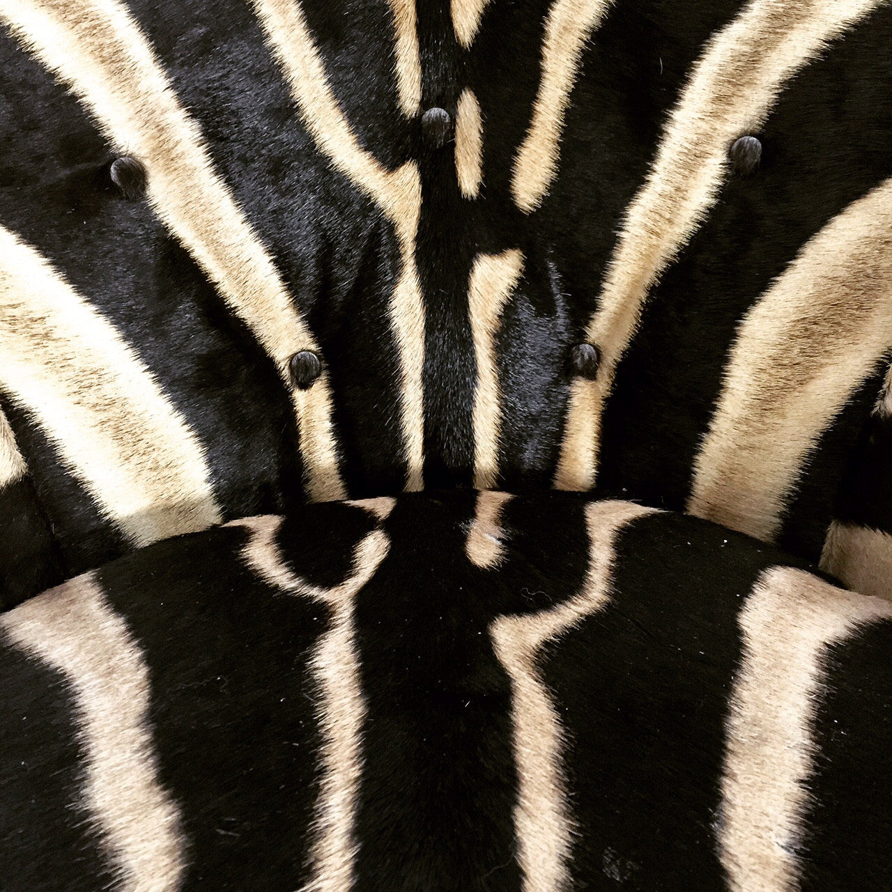 Swivel Tilt Club Chairs in Zebra Hide, pair - FORSYTH