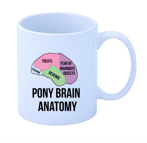 Pony Brain Anatomy Mug - SALE