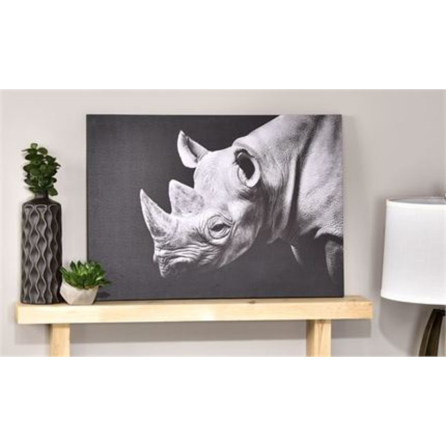 "Black & White Rhinoceros ""Robert"" Canvas Print"
