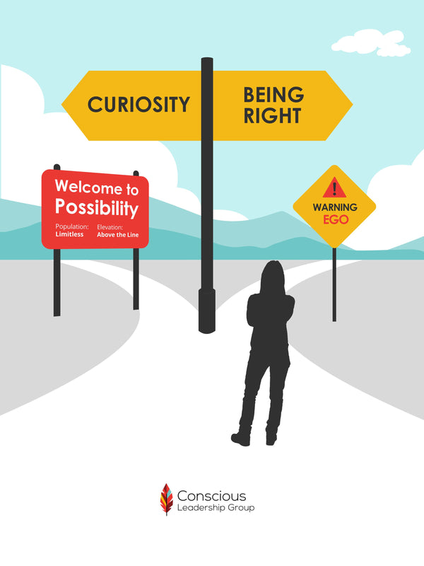 Curiosity: The Road to Possibility