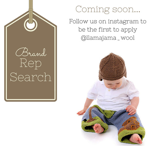 Brand Rep Search Brand Enthusiast Search 2016