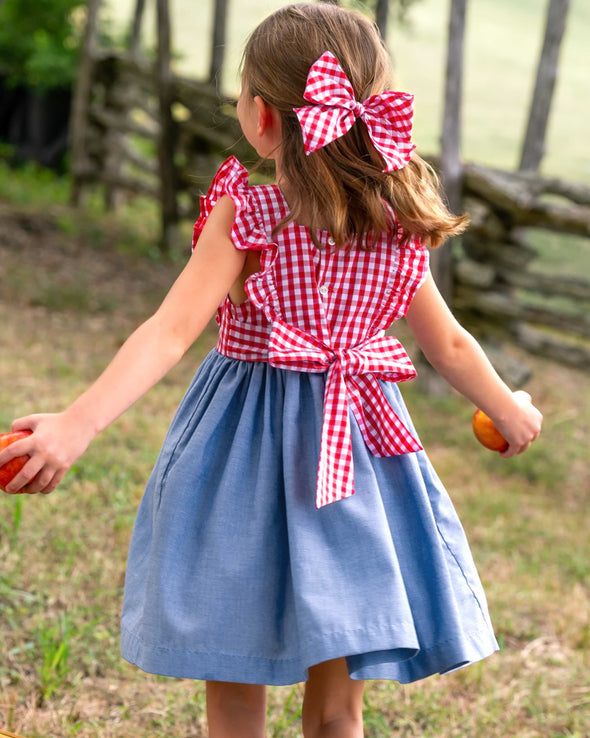 Gingham and Chambray Aria Dress