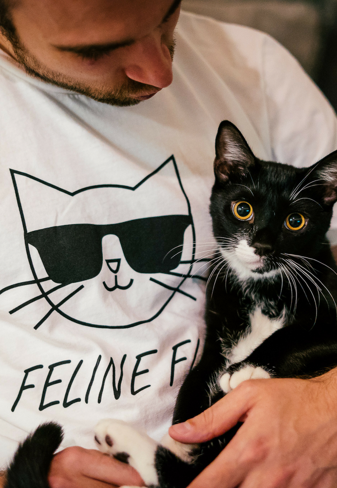 Load image into Gallery viewer, FELINE FINE (Organic)
