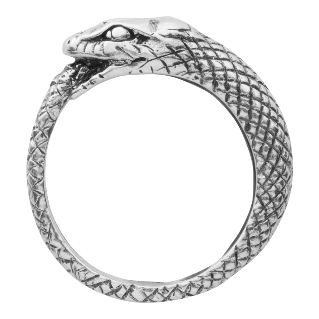 The snake biting it's own tail symbolizes eternity; a never ending wholeness and love that can never be broken. This eternity snake ring comes in 18K gold plate, silver and 14K gold
