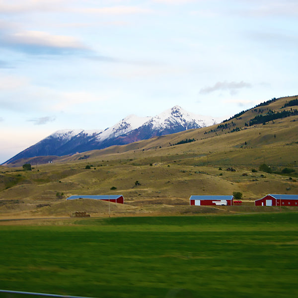 So much farmland and mountains in Montana near the Wyoming border where they meet at Yellowstone