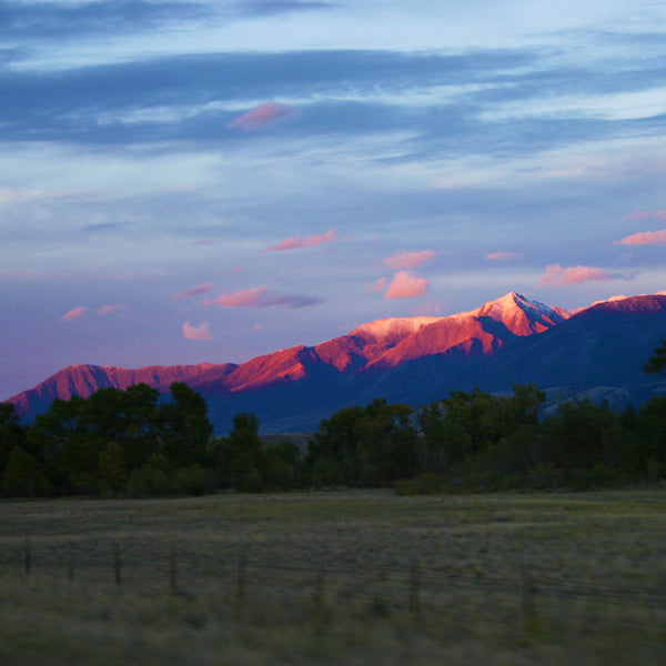 Darkness falls over Montana leaving the mountain tops painted pink as I drive out of Yellowstone National Park