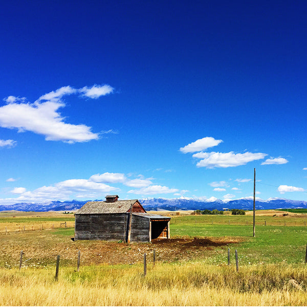 A little shack sits along the road in Montana on the road to Yellowstone National Park