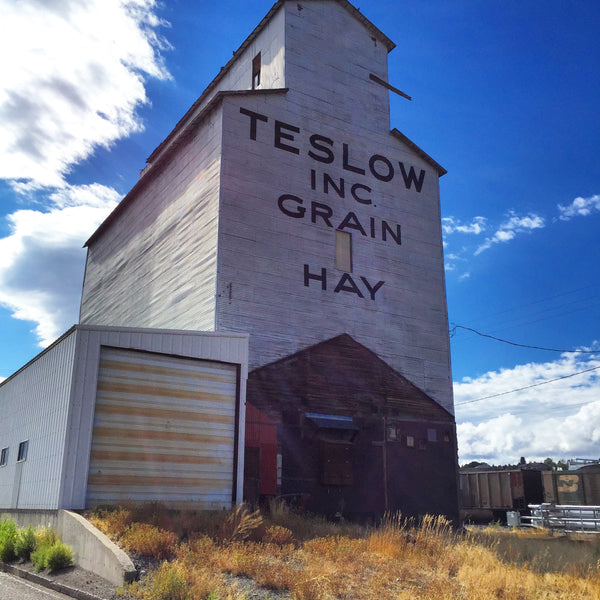 Teslow Grain and Hay building in Walsall, Montana