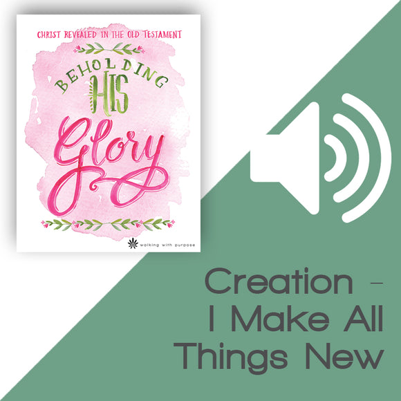 Beholding His Glory Audio Download Talk 1, Lesson 1