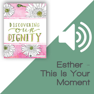 Discovering Our Dignity Audio Download Talk 4