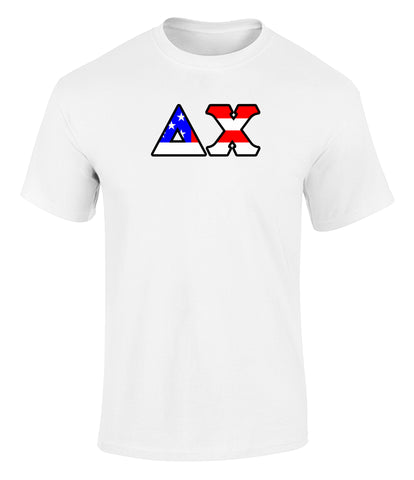 Delta Chi American Flag Tee