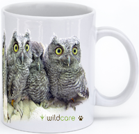 Four Screech Owls Mug (+$25 donation)