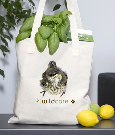 Baby Mockingbird Tote Bag (+$25 donation)