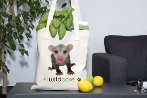 Baby Opossum Tote Bag + $25 donation
