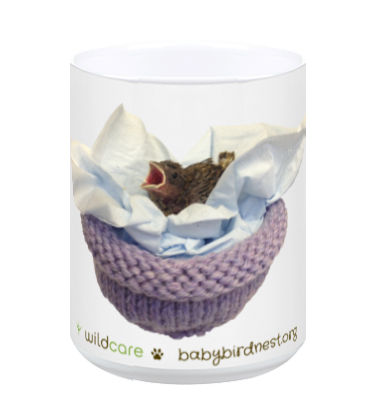 Baby Finch in Knitted Nest Mug (+$25 donation)