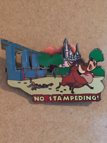 Disney Safety Rules No Stampeding Timon & Pumbaa Pin