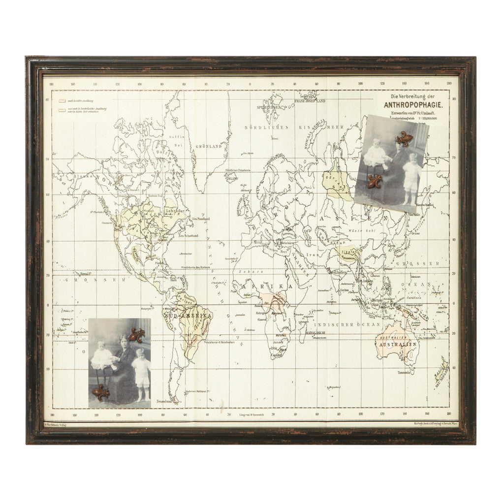 Cook Atlas Magnetic Board - Maps & Globes - The Bowery