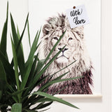 Magnetic Poster 62x100 Lion