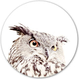 Magnetic Wall Decal Owl