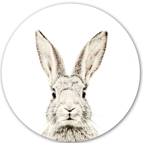 Magnetic Wall Decal Rabbit