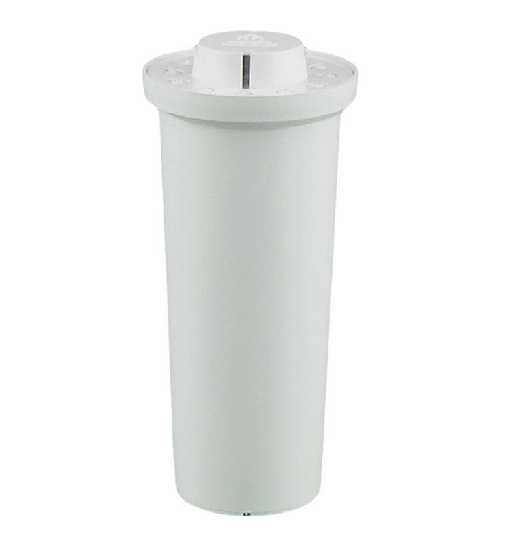 Waterman Replacement Filter
