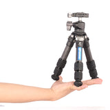leofoto LS-223C Portable Axis Carbon Fiber 3-Section Tripod W/ LH25 Ball Head