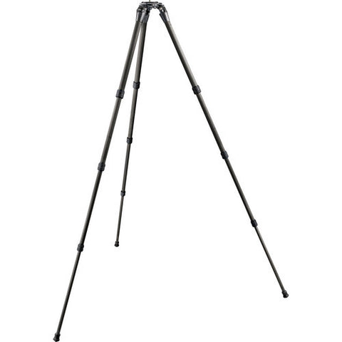 Gitzo Systematic Series GT2542LS 4 Section Carbon Fiber Tripod