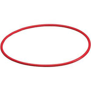 Olympus POL-041 O-Ring for PT-045/047/048/051