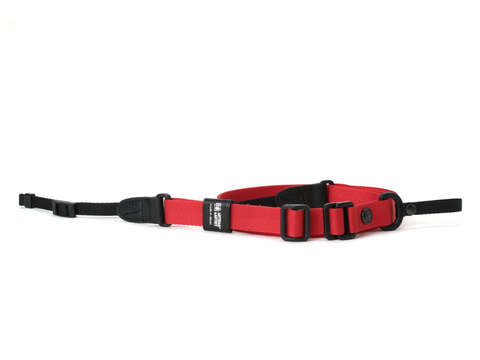 Artisan Artist ACAM E20 Easy Slider Camera Strap (Red)