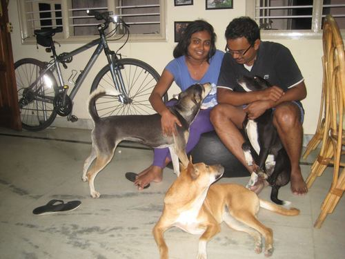 Dash, Bolt and Sox with Tina and Pratheek