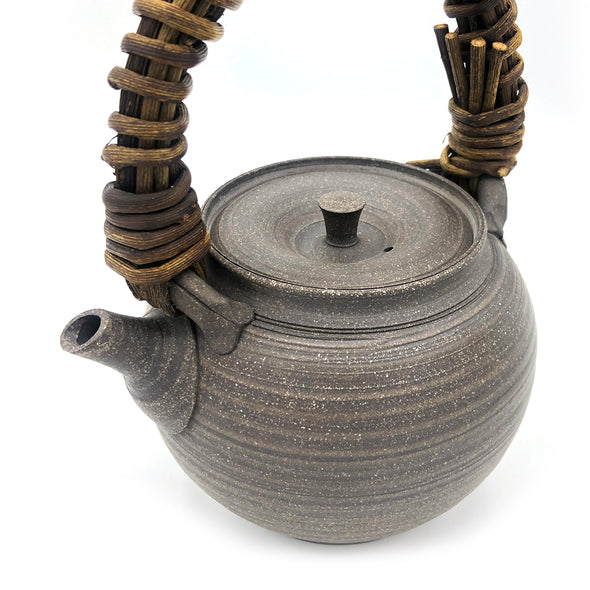 Vine Handle Teapot Tokoname