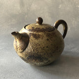 Kohiki Back Handle Round Teapot #2