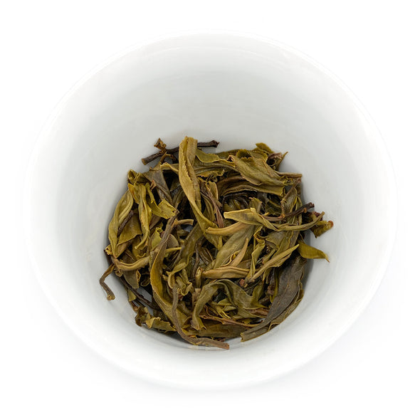 China: Menghai Mao Cha 2019 Sheng Puerh