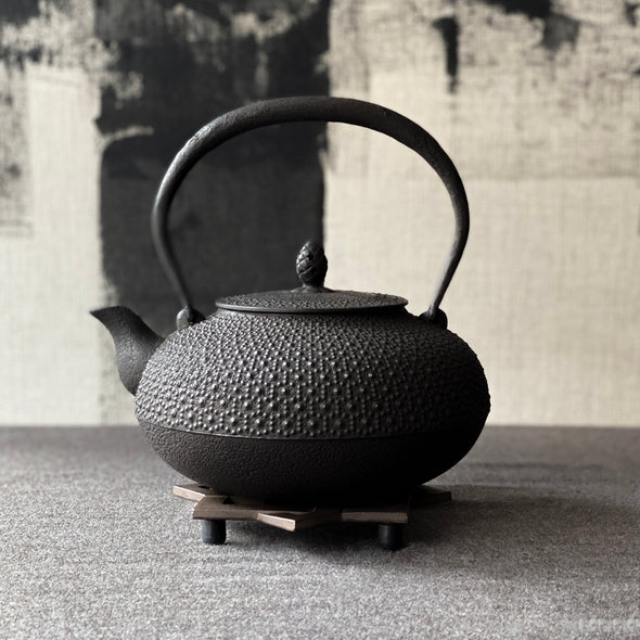 Kikkou Arare Turtle Shell Cast Iron Tetsubin Water Kettle
