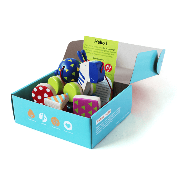 Box of Curiosity | Activity Box for Smart Kid | Free Shipping - Shumee