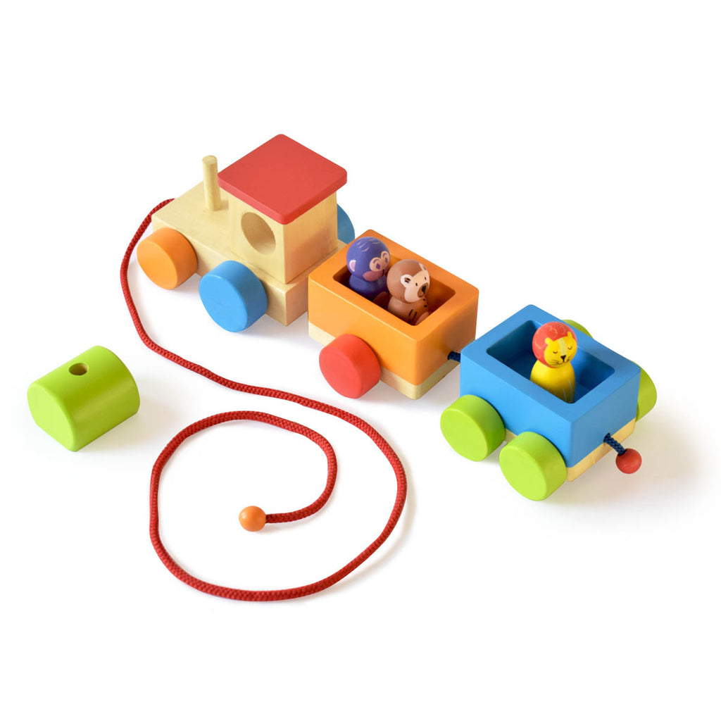 Jungle Toy Train Set