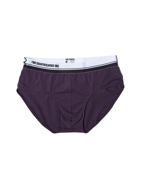 sexy briefs for men