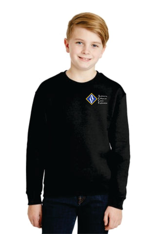ACCE Youth Crewneck Sweatshirt (Screen Print)
