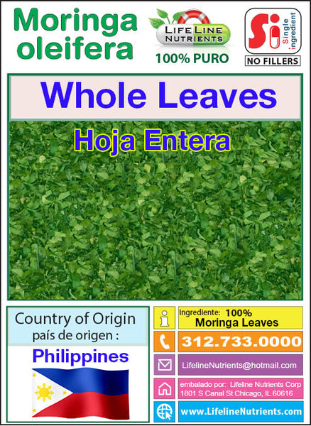 Moringa Oleifera, Whole dried leaves from Philippines,  FREE SHIPPING