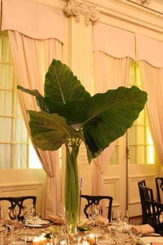 Tropical Foliage Event Designer Anissa Rae Flowers Lotos Club NYC