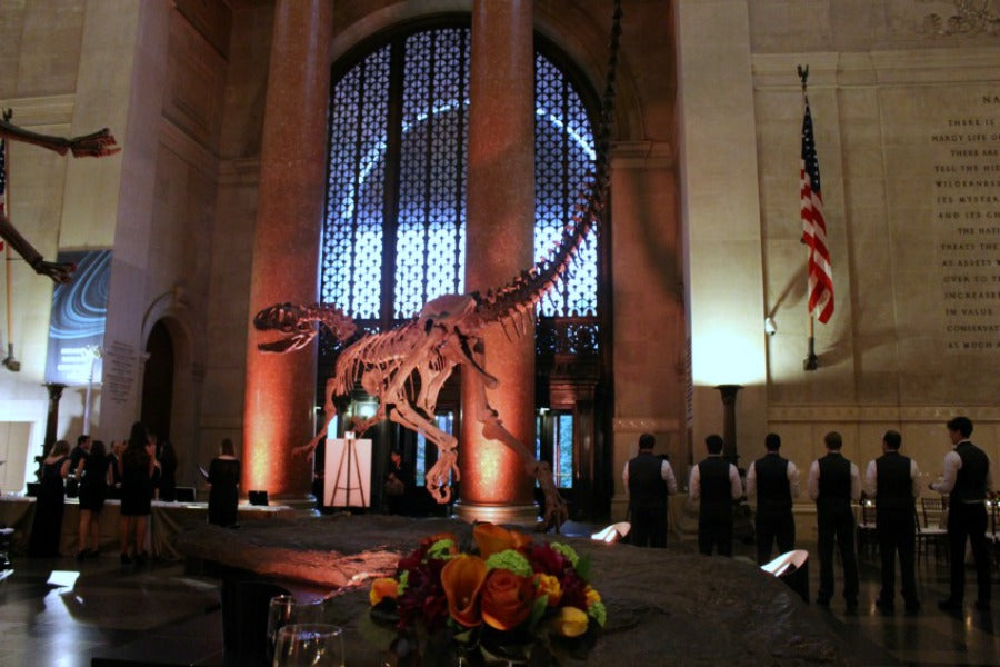 NYC Gala Florist Anissa Rae Flowers at the Museum of Natural History