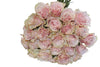 Twenty five pink mondial roses sold in bunches