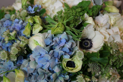 Flower arrangements with blue hydrangea for delivery in NYC