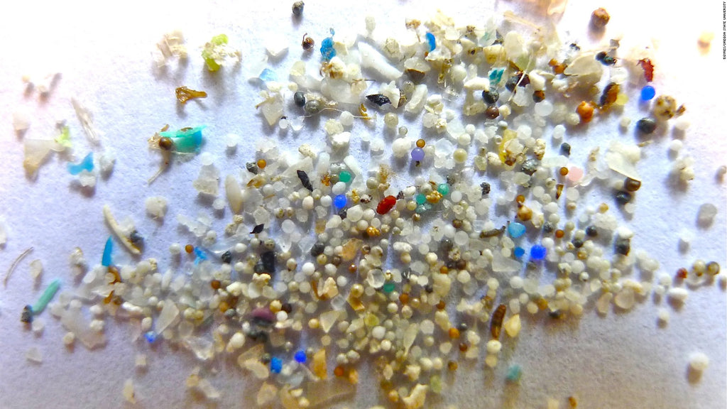 Eco-fact Friday: Banning Plastic Microbeads